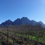 Cape Winelands